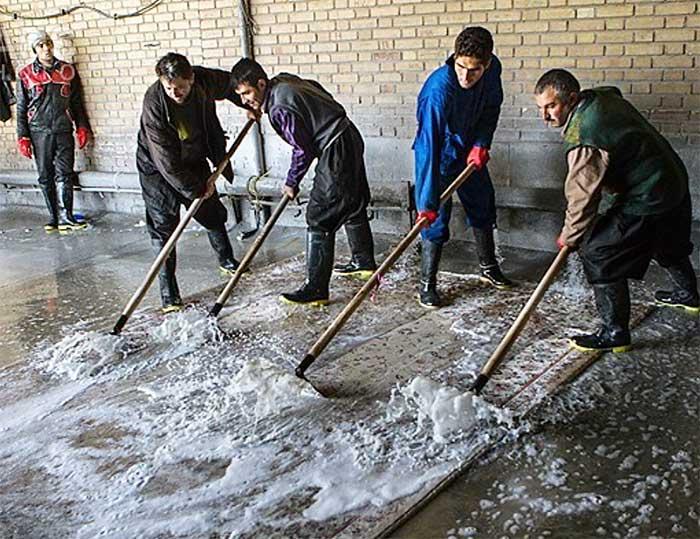 Centro lavaggio tappeti Milano in zona Washington